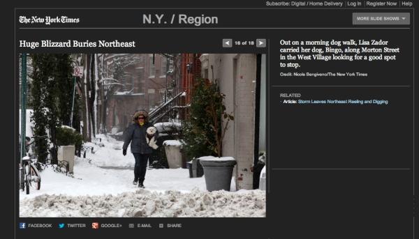 Lisa-Zador-NY-Times